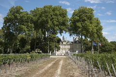 French chateau and vines Royalty Free Stock Photo