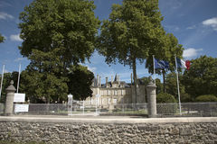French chateau and vines Royalty Free Stock Photos