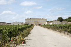 French Chateau and vines in St Julien Stock Image