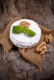 French cheese. White goat cheese with noble rot on wooden table Royalty Free Stock Photo