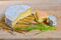 French Cheese Assortment. Assortment of three French cheeses Stock Photography