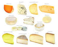 French cheese collection royalty free stock photography