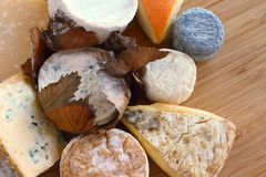 French Cheese composition Stock Photography