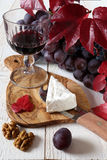French cheese Coulommiers, glass of red wine, walnuts and grapes Royalty Free Stock Photo