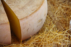 French cheese on hay Stock Photo