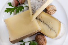 French cheese and nuts Royalty Free Stock Images