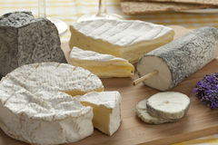 French cheese platter Royalty Free Stock Photography