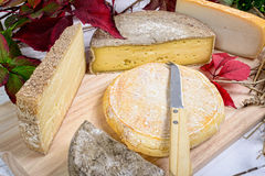 French cheese platter Stock Images