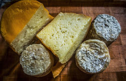 French Cheese. A selection of French cheeses Stock Photos