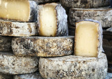 French Cheese Wheels Stock Image