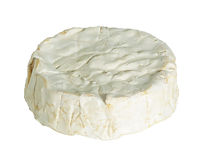 French cheeses -Camembert of Normandie. French cheeses - Camembert of Normandie, isolated on the white Royalty Free Stock Images