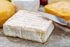 French cheeses collection, yellow Vieux Pane cheese with white mold served on marble plate outdoor in green garden stock photos