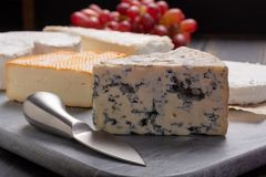 French cheeses plate in assortment, blue cheese, brie, munster,. Soft goat cheese, Neufchatel stock photo