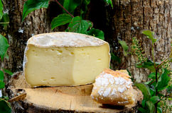 French cheeses Savoie Stock Images