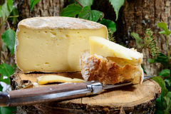 French cheeses Savoie Stock Photo