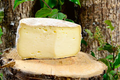 French cheeses Savoie Royalty Free Stock Images