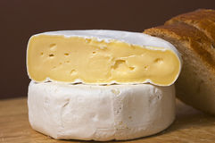 French cheeses,  tomme. French food - cheeses - the tomme Royalty Free Stock Image