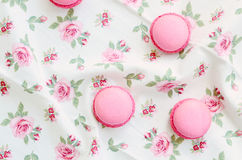 French cherry macaroon dessert Royalty Free Stock Images