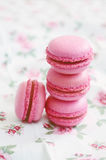 French cherry macaroon dessert Royalty Free Stock Image