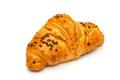 French chocolate croissant close up isolated Royalty Free Stock Photo