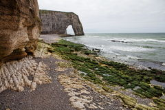 The French coast of the English channel in Normandy. France coast of the English channel in Normandy algae on the rocks during low tide, the resort town of Stock Images