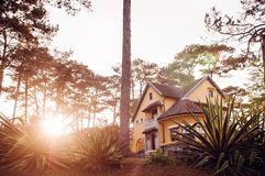 French Colonial House Evening Sun Light And Pine Forest, Dalat - Vietnam Royalty Free Stock Images