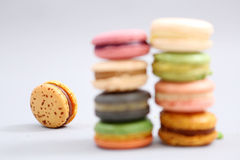 French colorful macarons Royalty Free Stock Image