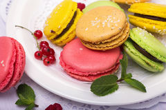 French colorful macaroons in the plate Royalty Free Stock Photos