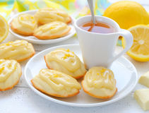 The French cookies Madeleine Royalty Free Stock Photography