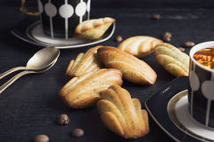 The French cookies Madeleine. With poppy seeds Stock Image