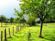 French country Stock Photography