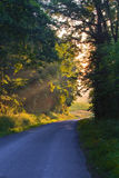 French country lane Stock Photo