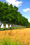 French country road Stock Photo
