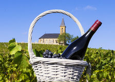 French country and vineyards Stock Photography