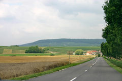Countryside road. In Champagne (France Royalty Free Stock Photography