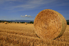 French Countryside landscape bis Stock Photography