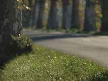 French countryside road on autumn Stock Photography