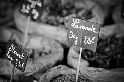 French cousine, herbs. Basics of french cousine, herbs Stock Photography