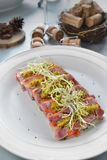 Terrine pork. French cuisine cold pork terrine salad Royalty Free Stock Photos