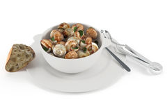 French cuisine. Snail Stock Photography