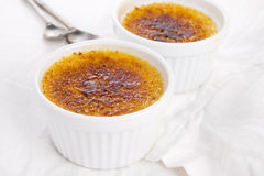 French dessert - cream brulee Stock Image