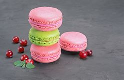 French dessert. Sweet pink and green macaroons or macarons with cranberry and mint. On black concrete background Stock Image