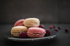 Sweet macaroons or macarons with cranberry and flower. dark concrete background Royalty Free Stock Image