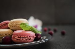 Sweet macaroons or macarons with cranberry and flower. dark concrete background Stock Images
