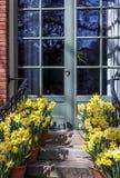 French Door Garden Stock Images
