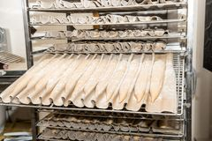 French dough bread baguettes ready for cooking Stock Photography
