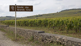 French famous wine road Stock Images