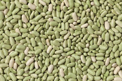French flageolets beans Stock Image