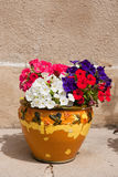 French flower pot Royalty Free Stock Image