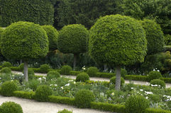 French formal garden Royalty Free Stock Images